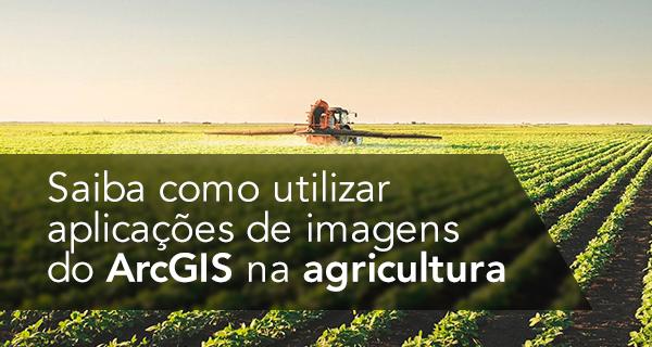 Saiba como utilizar aplicações de imagens do ArcGIS na agricultura
