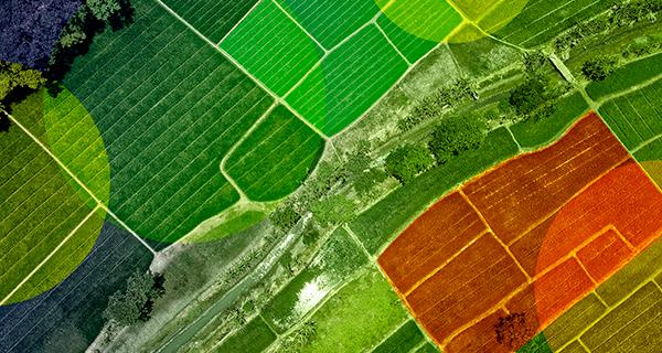 O monitoramento agrícola