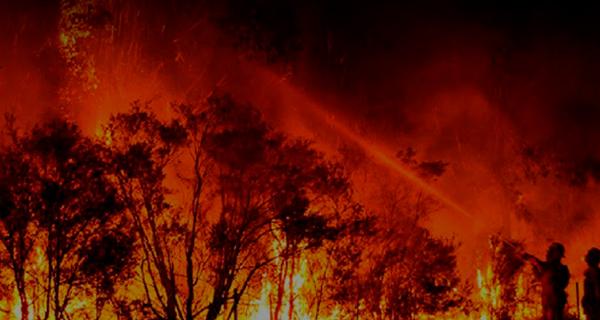 14-12-2020-Monitoramento-Incendios-de-Forma-Efetiva-Mini